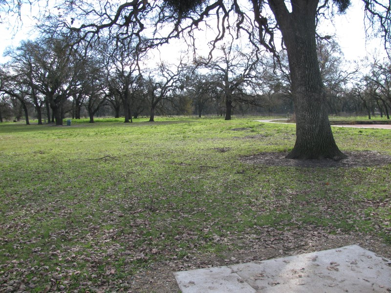 Oak Grove Regional Park - Gold